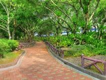 Bürgersteig im Park stockbilder