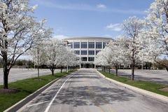 Bürohaus im Frühjahr Stockbild