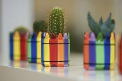 Bürokaktus blüht der Nadel-Blume des Stimmungsguten tages schönen Arbeitsplatz Lizenzfreie Stockbilder