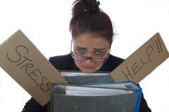 Bürosekretär Stockbild