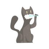 Bürstende Zähne der netten Katze der Karikatur grauen mit buntem Charakter der Zahnbürste und der Paste, Tierpflegenvektor Illust Stockbilder