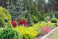 Büsche in einem groß konzipierten Park Stockbild