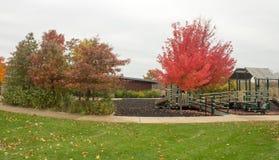 Büsche und Bäume im Park Lizenzfreies Stockfoto