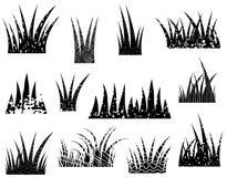 Büschel des Vektorzusammenfassungs-Grasschattenbildes Stockfoto