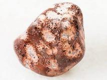 bębnujący leopardskin jaspisowy gemstone na bielu Obraz Royalty Free
