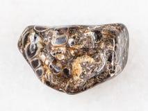bębnujący Turritella agata klejnotu kamień na bielu marmurze Obrazy Stock