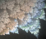 Błękitów liście z hoarfrost Fotografia Stock