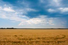 Błękit chmury wieszać nad koloru żółtego polem zdjęcia royalty free