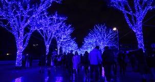 Błękit iluminował światło przy ulicą w Harajuku Tokio zbiory