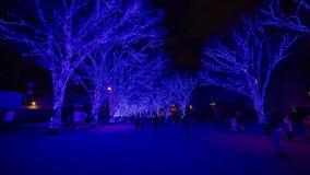 Błękit iluminował światło przy ulicą w Harajuku Tokio zbiory wideo