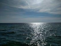 błękit krajobrazowy oceanu palm niebo Zdjęcie Royalty Free