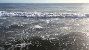 Błękit macha surfing na ocean tropikalnej plaży zdjęcie wideo