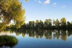 błękit nieba przyćmiewa lake drzewa Zdjęcie Stock