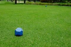 Błękit szpilka na teeing ziemi Fotografia Stock