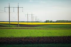 błękit trawy zieleni nieba śródpolna wiosna Obrazy Stock