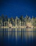 błękit zgłębia odbicia Fotografia Royalty Free