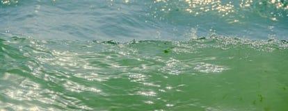 Błękit, zieleni wodne fala, Czarny Denny piaskowaty brzeg, nadmorski z watem Fotografia Royalty Free