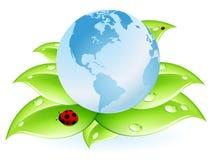 błękit ziemi liść planeta Zdjęcia Stock