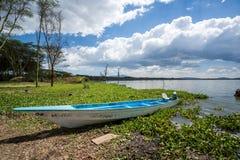 Błękita czółno nad tropikalnym jeziorem, Afryka Wschodnia Obrazy Royalty Free