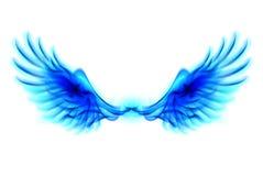 Błękita ogienia skrzydła Zdjęcia Royalty Free