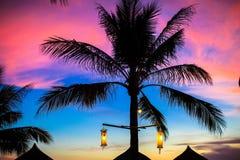 Błękita różowy i czerwony zmierzch nad morze plażą z palmą Fotografia Stock