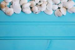 Błękita tła plażowy wizerunek biel dryluje i łuska Zdjęcia Stock