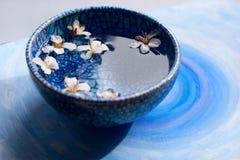 Błękita talerz z płatkami Obrazy Royalty Free