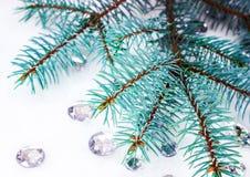 Błękitna świerczyny gałąź z kryształami dla dekoraci Obraz Royalty Free