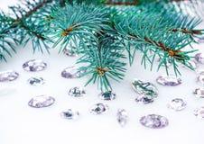 Błękitna świerczyny gałąź z kryształami dla dekoraci Obrazy Stock