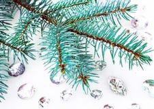 Błękitna świerczyny gałąź z kryształami dla dekoraci Zdjęcia Royalty Free