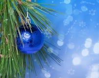 Błękitna Bożenarodzeniowa piłka na zieleni gałąź Zdjęcia Royalty Free