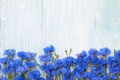Błękitna Chabrowa granica na bławym tle Odgórny widok, kopia obrazy stock