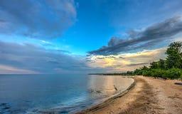 Błękitna czapla na Chesapeake zatoki plaży przy zmierzchem Fotografia Stock