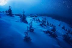 Błękitna czarodziejska noc Obraz Stock