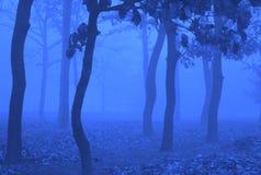 Błękitna fantazja Obraz Royalty Free