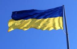 Błękitna flaga państowowa Ukraina falowanie na wiatrze obrazy royalty free