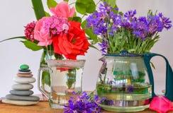 Błękitna gencjana herbaty terapia Fotografia Stock