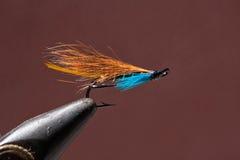 Błękitna i pomarańczowa połów komarnica Zdjęcia Stock