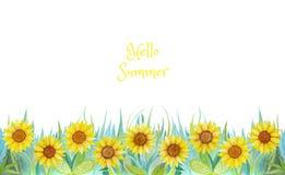 Błękitna i zielona trawa z jaskrawymi kwiatami s?oneczniki bia?e t?o odizolowanych royalty ilustracja