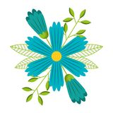Błękitna kwiatów płatków liści natury dekoracja Zdjęcie Royalty Free