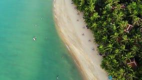 Błękitna laguna i piaskowata plaża z palmami Widok z lotu ptaka błękitni laguny i słońca łóżka na piaskowatej plaży z kokosowymi  zbiory
