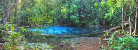 Błękitna laguna, Krabi, Tajlandia obrazy royalty free