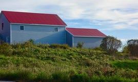 Błękitna Maine stajnia z czerwień dachem za gęstą roślinnością zdjęcia royalty free