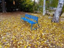 Błękitna metal ławka cieszyć się pokój fotografia stock