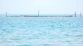 Błękitna morze sieć i powierzchnia zbiory wideo