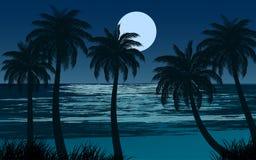 Błękitna noc przy plażą ilustracji