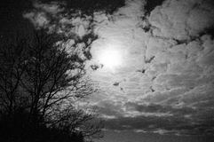 Błękitna noc z księżyc pod chmurami Zdjęcia Stock