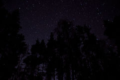 Błękitna noc z księżyc pod chmurami Zdjęcie Royalty Free