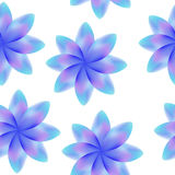 Błękitna purpura kwitnie, bezszwowy okresowy kwiecisty wzór, kwiaty, przejrzysty tło Zdjęcie Royalty Free