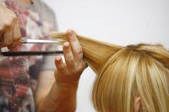 Błękitna Włosiana kobieta w salonie dla ostrzyżenia obraz stock
